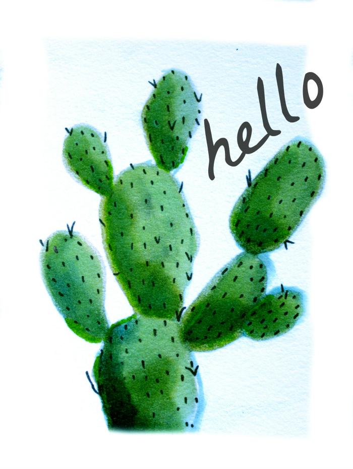 hello cactus ii 700